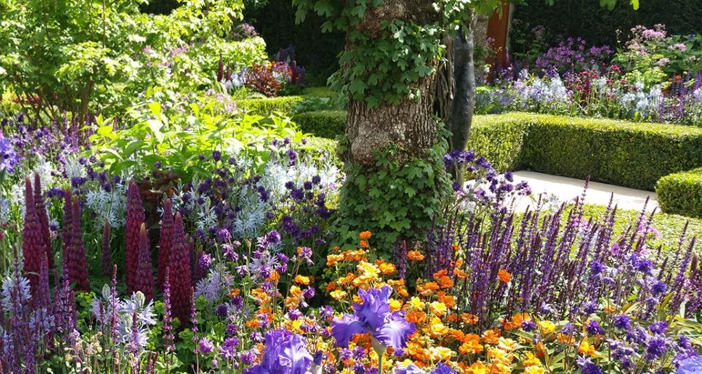 Gartengestaltung in nieder sterreich living garden for Gartengestaltung nach farben