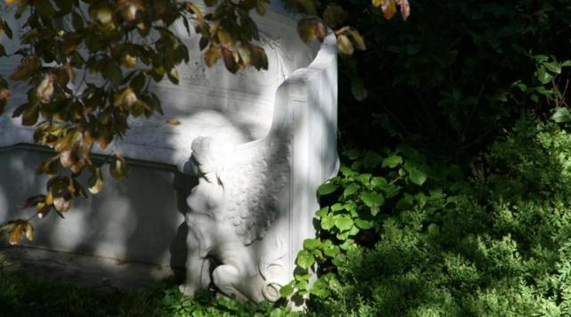 Lichtspiel eines Schattengartens mit kontraststarker Steinbank