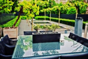 Das Bild zeigt einen modernen Garten.