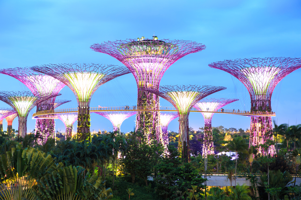 Die beleuchteten Supertrees der Gardens by the Bay