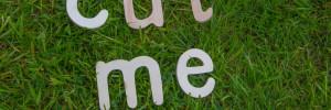 """Auf dem Bild steht in Holzbuchstaben """"Cut me"""" die im Rasen liegen, und darauf hinweisen sollen, dass der Rasen mit einem Rasen-Roboter geschnitten werden soll."""