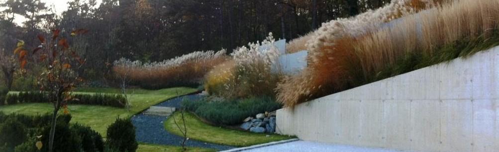 Hanggarten mit Sichtbeton wänden