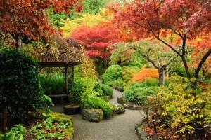Gartengestaltung auf höchsten Niveau