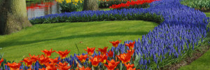 Farbtipps Garten